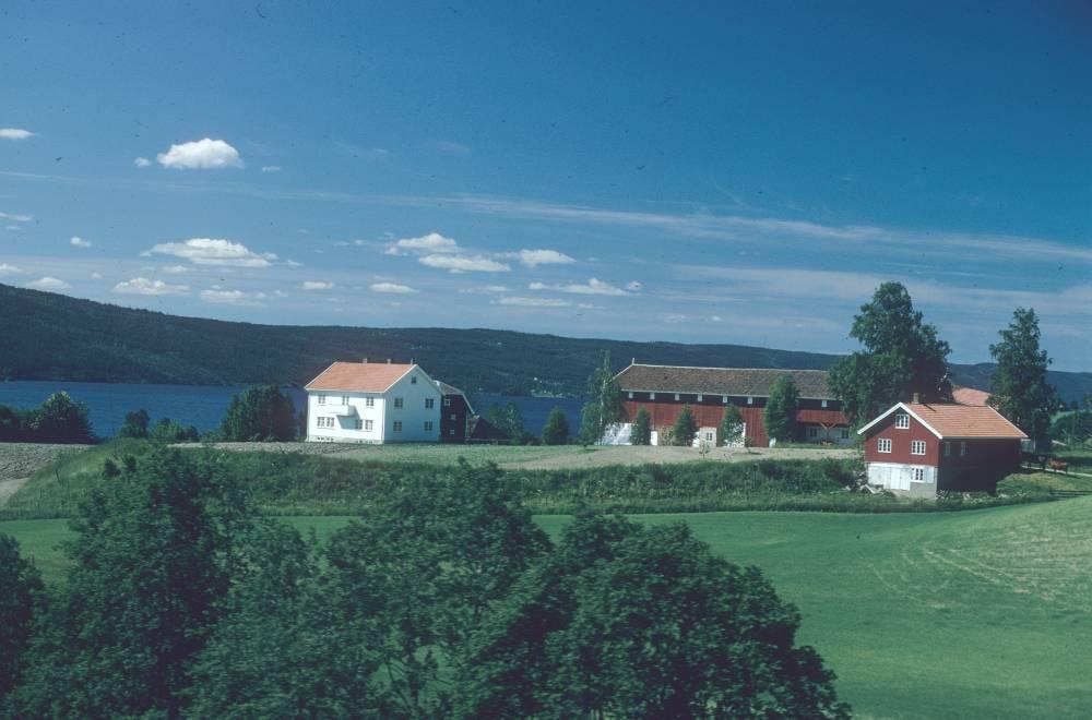 gard-randsfjord